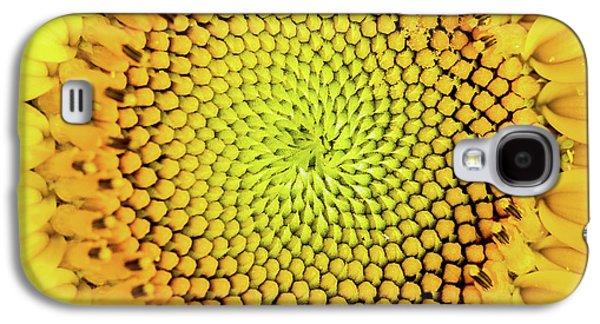 Sunflower Large Round Beach Towel Design Galaxy S4 Case by Edward Fielding