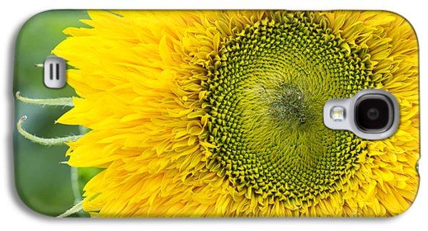 Sunflower Superted Galaxy S4 Case