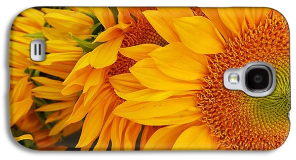 Sunflowers Train Galaxy S4 Case