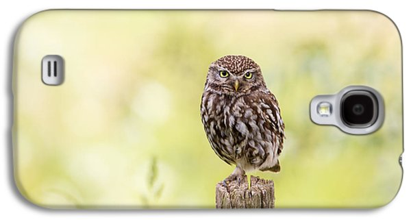 Sunken In Thoughts - Staring Little Owl Galaxy S4 Case by Roeselien Raimond