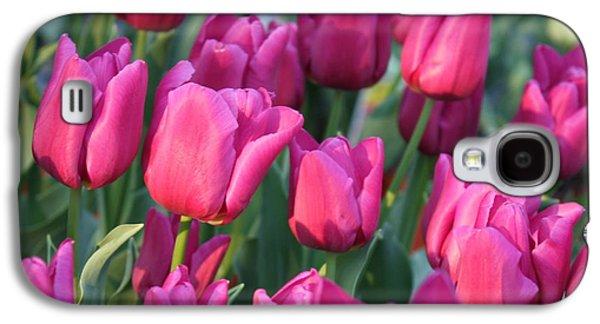 Sunlight On Pink Tulips Galaxy S4 Case by Carol Groenen