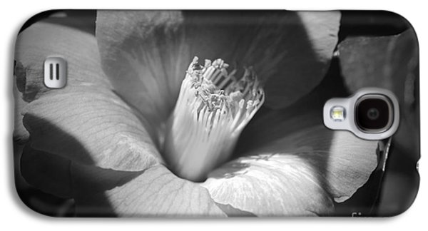 Sunlit Camellia - Black And White Nature Galaxy S4 Case by Carol Groenen