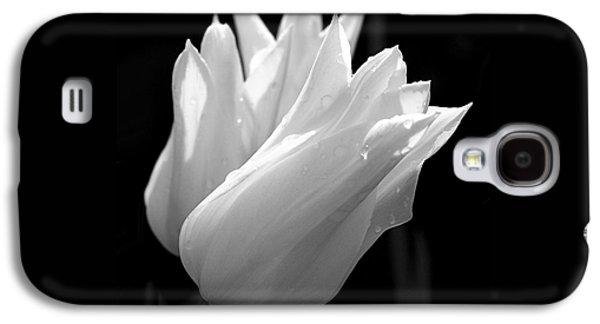 Sunlit White Tulips Galaxy S4 Case
