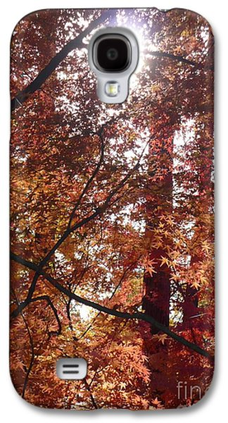 Sunny Autumn Day Poster Galaxy S4 Case