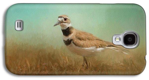 Killdeer Galaxy S4 Case - Sunny Day Stroll by Jai Johnson