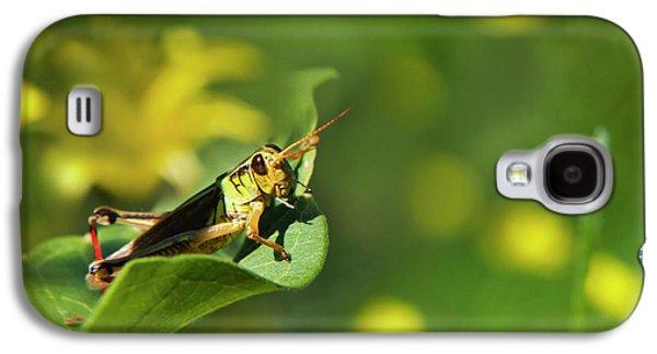 Green Grasshopper Galaxy S4 Case by Christina Rollo
