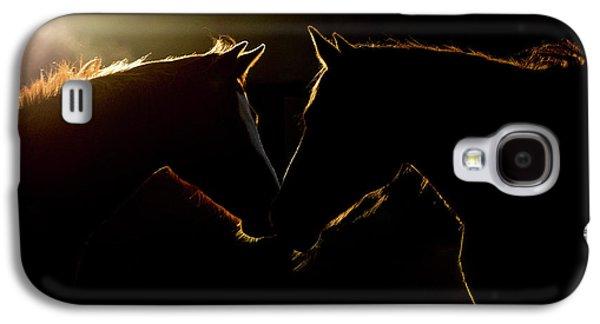 Sunrise Companions Galaxy S4 Case