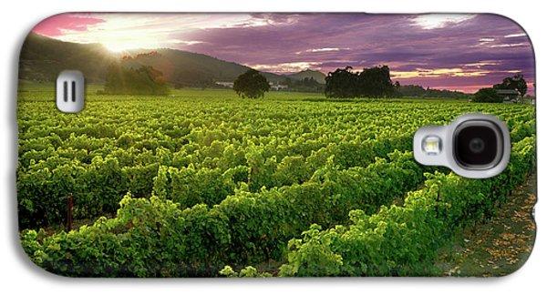 Sunset Over The Vineyard Galaxy S4 Case by Jon Neidert