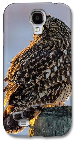 Sunset Short-eared Owl Galaxy S4 Case
