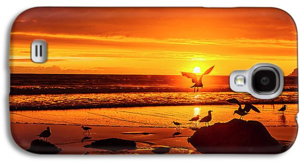 Sunset Surprise Pano Galaxy S4 Case