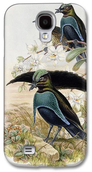 Superb Bird Of Paradise  Galaxy S4 Case by John Gould