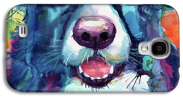 Colorful Galaxy S4 Case - Surprised Border Collie Watercolor by Svetlana Novikova
