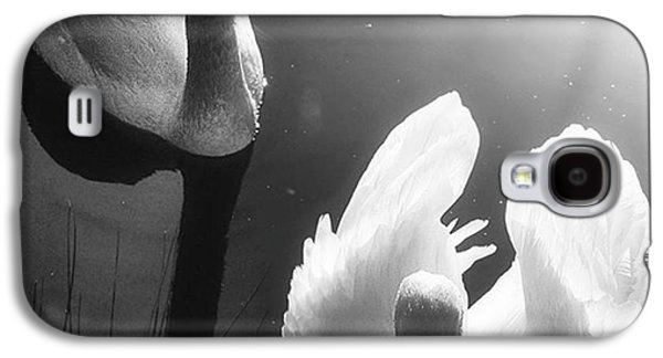 Galaxy S4 Case - Swan Lake In Winter -  Kingsbury Nature by John Edwards