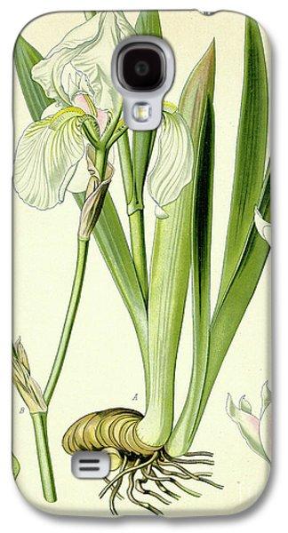 Sweet Iris  Galaxy S4 Case