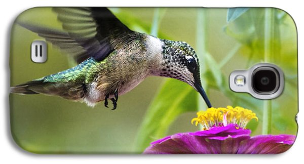 Sweet Success Hummingbird Square Galaxy S4 Case by Christina Rollo