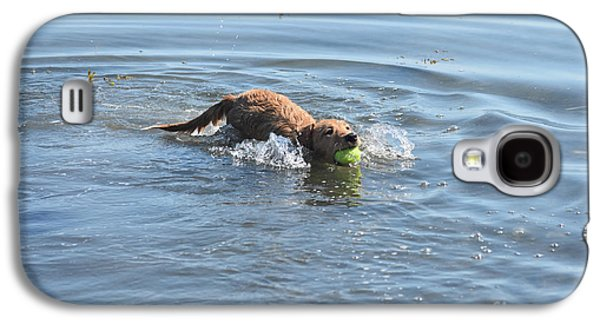 Swimming Toller Dog With A Ball In His Mouth Galaxy S4 Case by DejaVu Designs