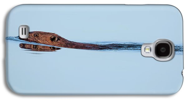 Swimming With The Beaver Galaxy S4 Case by Bill Wakeley