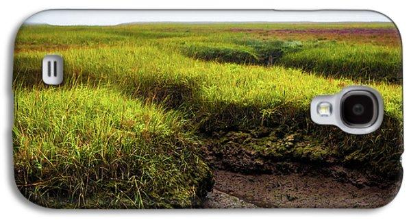 Terra Firma  Galaxy S4 Case by John Wesolowski