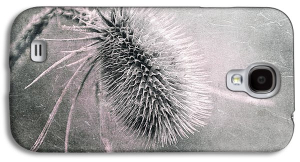 Teazel Weed Galaxy S4 Case by Tom Mc Nemar
