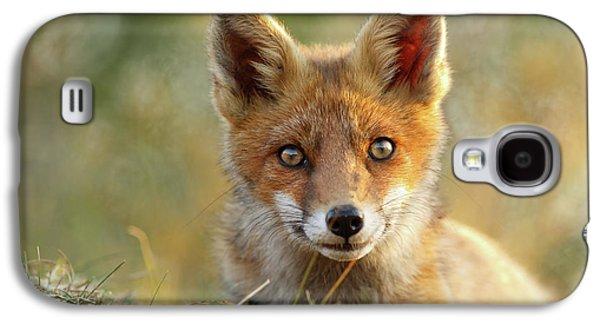 That Face - Cute Fox Kit Galaxy S4 Case by Roeselien Raimond