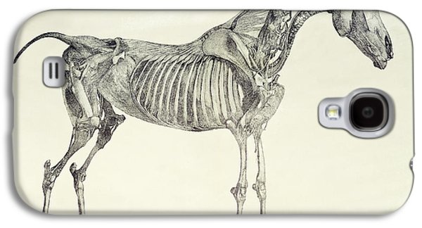Blood Drawings Galaxy S4 Cases - The Anatomy of the Horse Galaxy S4 Case by George Stubbs
