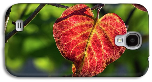Galaxy S4 Case featuring the photograph The Autumn Heart by Bill Pevlor
