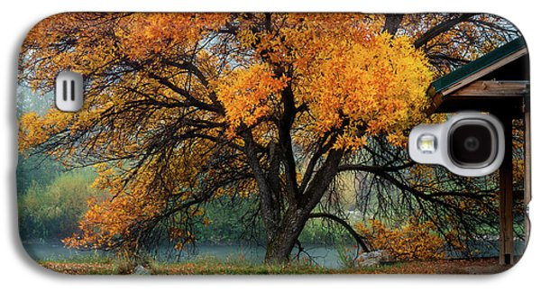 The Autumn Tree Galaxy S4 Case by TL Mair