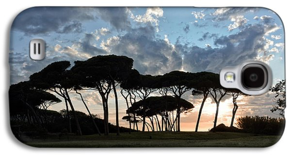 The Baratti Pine Trees Galaxy S4 Case
