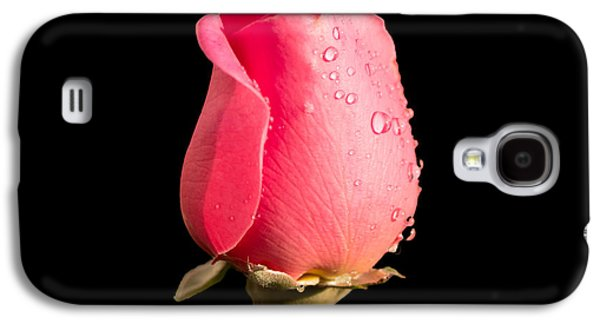 The Beauty Of A Rose Galaxy S4 Case