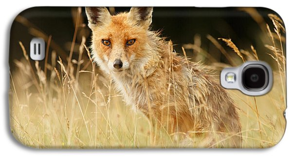 The Catcher In The Grass - Wild Red Fox Galaxy S4 Case by Roeselien Raimond