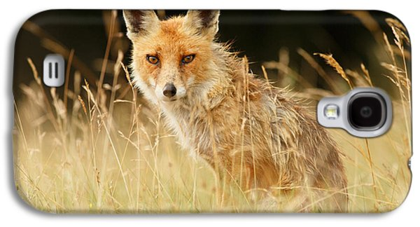 The Catcher In The Grass - Wild Red Fox Galaxy S4 Case