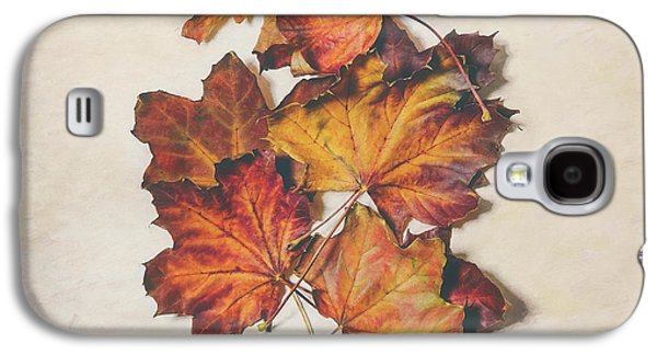 The Colors Of Fall Galaxy S4 Case by Scott Norris