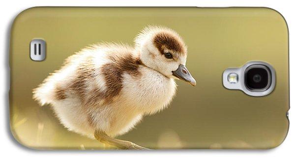 The Cute Factor - Egyptean Gosling Galaxy S4 Case by Roeselien Raimond