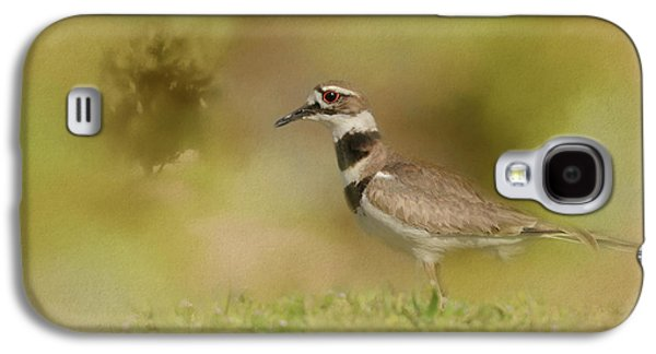 Killdeer Galaxy S4 Case - The Elusive Killdeer by Jai Johnson