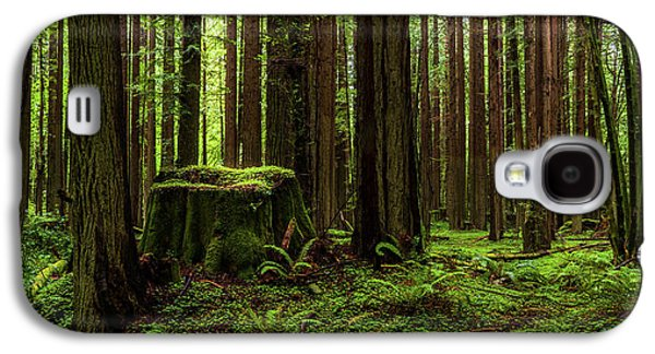 The Emerald Forest Galaxy S4 Case
