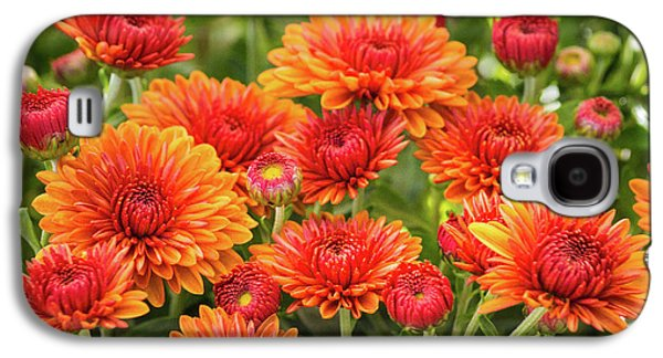 Galaxy S4 Case featuring the photograph The Fall Bloom by Bill Pevlor