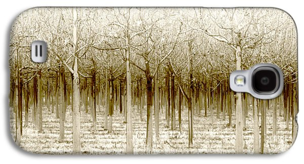 The Forest For The Trees Galaxy S4 Case by Holly Kempe