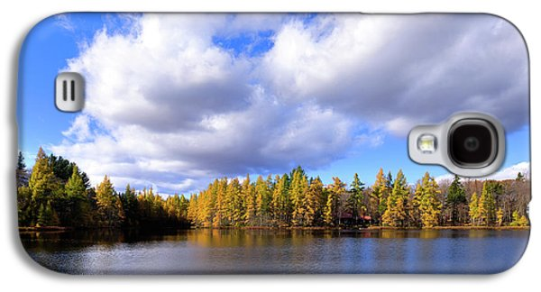 Galaxy S4 Case featuring the photograph The Golden Forest At Woodcraft by David Patterson