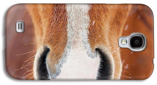 The Horse Collection #2 Galaxy S4 Case by Tom Cuccio