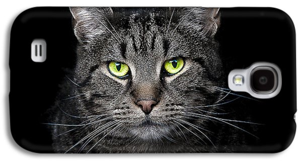 Cat Galaxy S4 Case - The Hypnotist by Paul Neville
