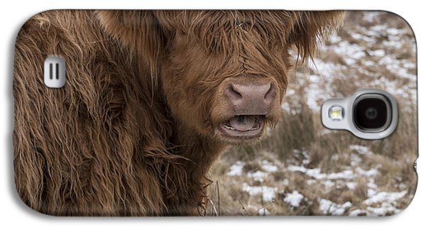 The Laughing Cow, Scottish Version Galaxy S4 Case