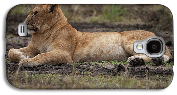 The Lioness Galaxy S4 Case by Nichola Denny