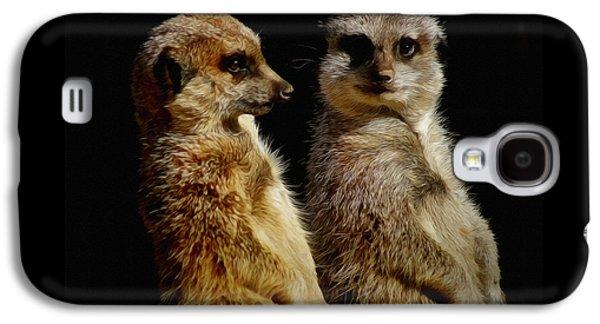 The Meerkats Galaxy S4 Case by Ernie Echols