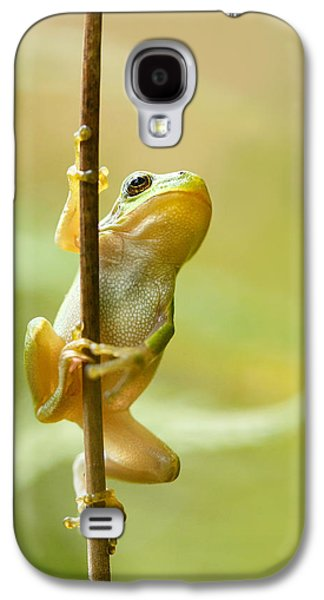The Pole Dancer - Climbing Tree Frog  Galaxy S4 Case