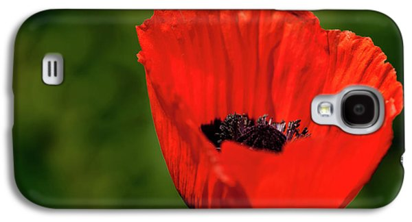 The Poppy Next Door Galaxy S4 Case by Onyonet  Photo Studios