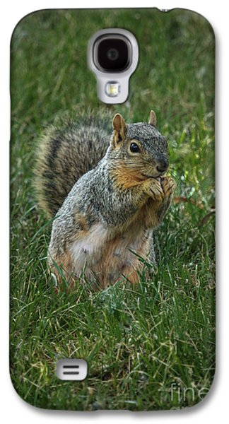 The Praying Squirrel Galaxy S4 Case by Robert Bales