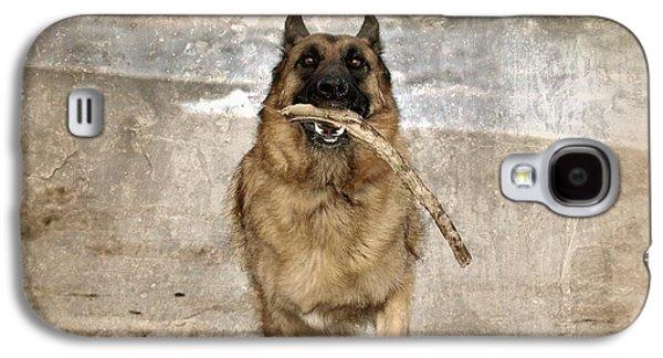 Dog Framed Prints Digital Galaxy S4 Cases - The Retrieve Galaxy S4 Case by Angie Tirado