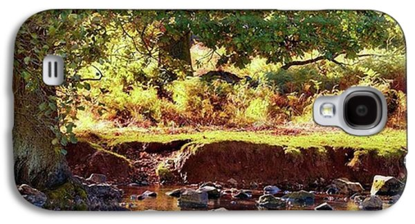Sky Galaxy S4 Case - The River Lin , Bradgate Park by John Edwards