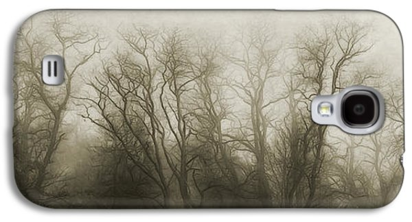 The Secrets Of The Trees Galaxy S4 Case by Scott Norris