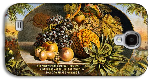 The Sunny South Vintage Fruit Label Galaxy S4 Case by Vintage